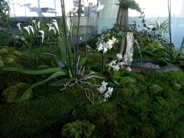Jardins d hiver o jardines de ensue o monamour natural - Jardines de ensueno ...