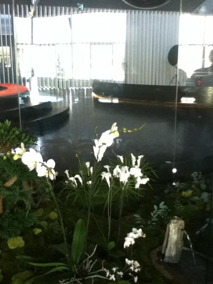 Jardins d hiver o jardines de ensue o monamour natural - Jardins dhiver com ...
