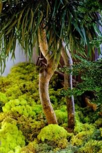 """Casa Decor 2012 Proyecto: Claudia Bonollo y Catherine Grenier """" La Catedral Vegetal"""" Diseño Jardín vertical con plantas naturales preservadas y palmeras Washingtonia Art Director: Claudia Bonollo / Foto: Philippe"""
