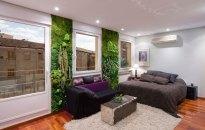 Foto: PHILIPPE IMBAULT 2 jardines de 250 x 80 cm con amplio surtido de plantas especiales. .
