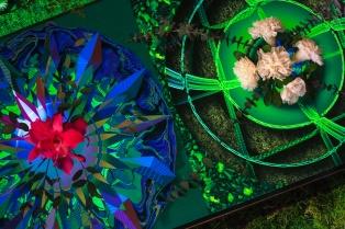 Cajas de luz con flores