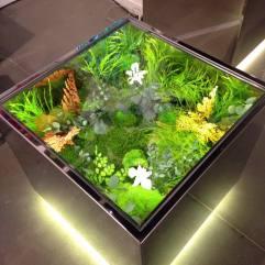 Garden in the box