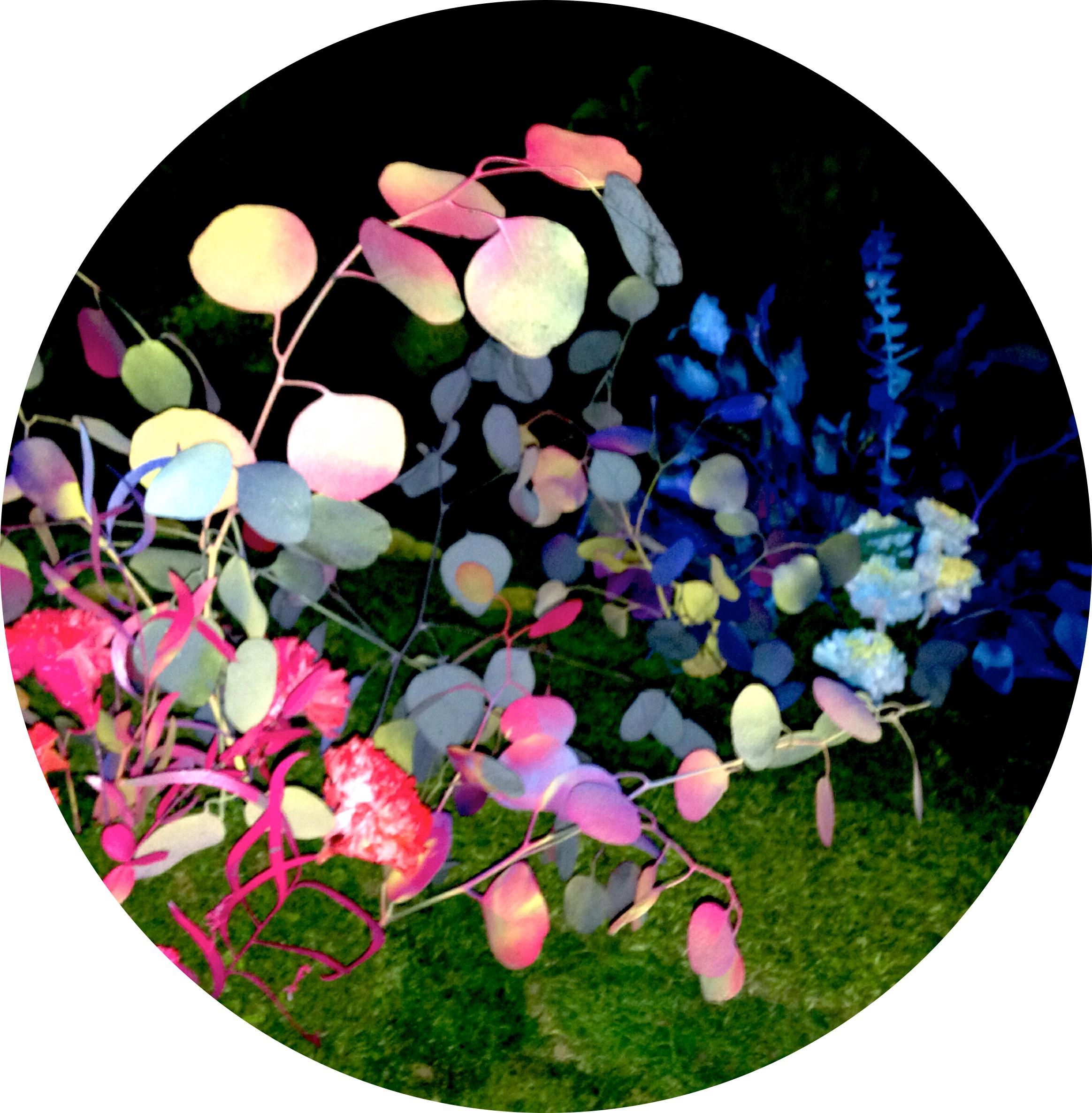 ucle jardin dutud el jardn estival un jardn onrico diseado por claudia bonollo para el nuevo escaparate de clorofila digital
