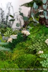 jardin-alma-08firmado