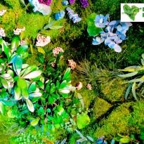 jardin-alma-circulae-05