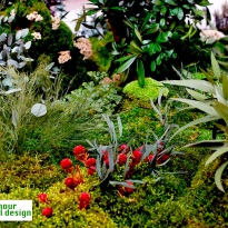 jardin-alma-circular-detalle-11