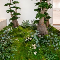 jardin-alma-detalle-01