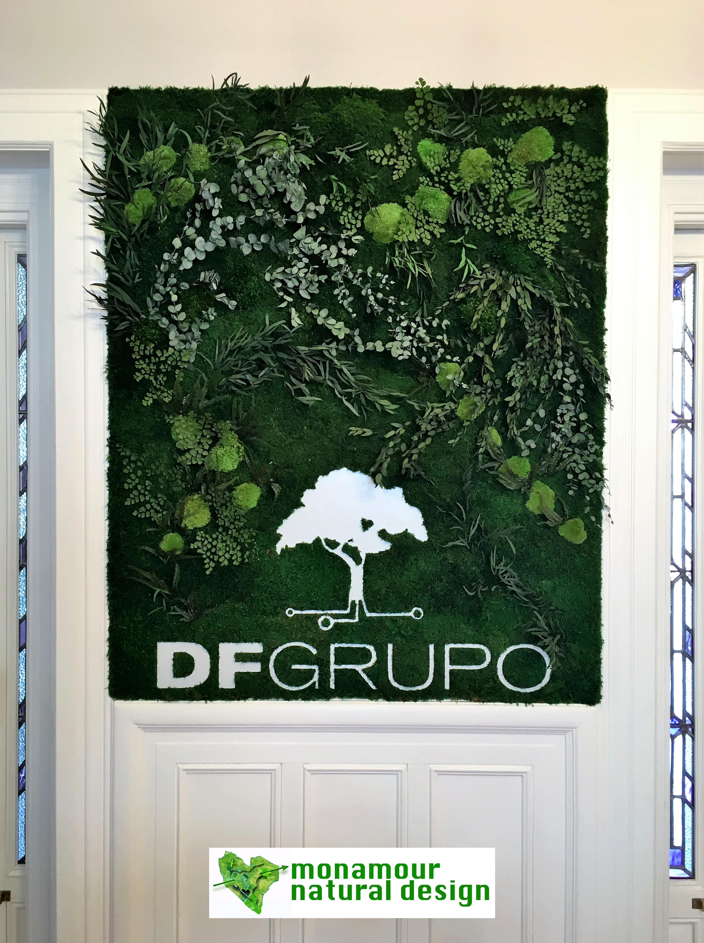 DF Grupo (2)MND